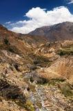 Colca Tal, Peru Lizenzfreies Stockfoto