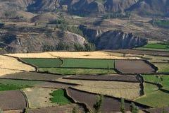 Colca Valley 3 Royalty Free Stock Photos