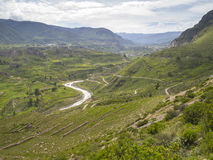 Colca Valley, Arequipa, Peru. royalty free stock image