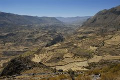 Colca valley, Peru stock image
