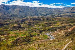 Colca Valley, Peru Royalty Free Stock Photography
