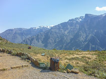 Colca Valley Viewer Royalty Free Stock Photos