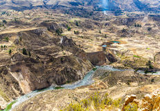 Colcacanion, Peru, Zuid-Amerika. Incas om de Landbouwterrassen met Vijver en Klip te bouwen. Één van de diepste canions in wor stock foto's
