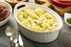 Colcannon, potatoes and cabbage dish Royalty Free Stock Photo