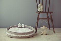 Colchão cinzento do animal de estimação no quarto Imagem de Stock Royalty Free
