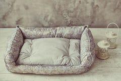 Colchón gris del animal doméstico en el cuarto con la lámpara foto de archivo