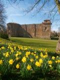 Colchester Schloss im Frühjahr Stockbilder