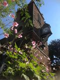 Colchester torn med klockan Royaltyfri Bild