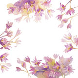 Colchicum watercolor. Illustration of watercolor Colchicum, Autumn Crocus, on a white background Stock Photo
