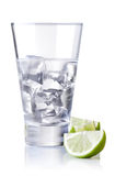 Cold alcohol Royalty Free Stock Photography