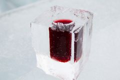 Cold alcoholic drink beverage in a glass ice. Served in Quebec City during winter stock photo