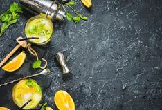 Cold alcoholic summer citrus cocktail with orange and mint in glasses and on dark stone background. Cocktail making bar tools, sha Royalty Free Stock Image