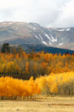 Cold Autumn Day in the Rockies Royalty Free Stock Images