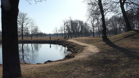 Cold autumn empty park with bare trees and lonely icy pond stock footage