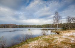 Cold autumn at forest lake Stock Images