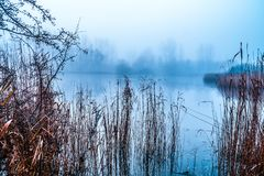 Cold autumn morning by lake. A view of a misty lake on a cold autumn morning royalty free stock photos