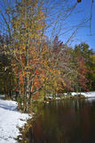 Cold Autumn Pond Royalty Free Stock Photo