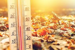 Free Cold Autumn Weather - 10 Degrees Celsius. Thermometer In The Autumn Cold Weather In The Leaves Shows Low Temperatures - Plus Ten. Royalty Free Stock Images - 128316949