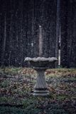 Cold bath stock photography