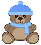 Cold bear Royalty Free Stock Photo