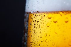 Cold beer. Fresh  beer with froth and condensed water pearls Stock Image