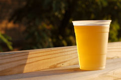 Cold Beer. A cold beer in late afternoon sun Stock Photos