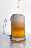 Cold Beer. Beer being poured into the tall glass, over white background Stock Photo