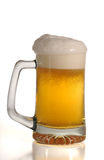 Cold Beer. In the tall glass, over white background Royalty Free Stock Photo