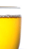 Cold beer Royalty Free Stock Photography