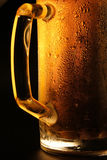 The cold beer Royalty Free Stock Image