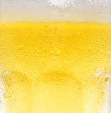Cold beer. Extreme closeup of cold beer Stock Photography
