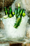 Cold beer. Ice Cold beer in bucket in front of waterfall Stock Image
