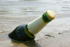 Cold beer bottle. Cooling of beer bottle in the river Royalty Free Stock Photography
