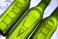Cold beer bottle. Beer collection, glass in studio Royalty Free Stock Image