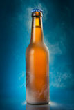 Cold beer bottle Royalty Free Stock Photo