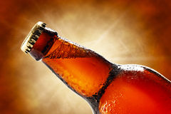 Cold beer bottle Stock Images