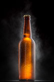Cold beer bottle with drops  on black Royalty Free Stock Images