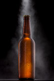 Cold beer bottle with drops Royalty Free Stock Photos