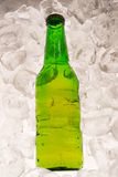 Cold beer bottle with ice Royalty Free Stock Photo