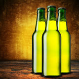 Cold beer bottles Royalty Free Stock Images