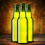 Cold beer bottles Royalty Free Stock Photography