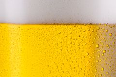 Beer. A cold beer with drops of condensation as a background Texture. ideal for websites and magazines layouts Stock Images