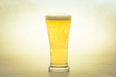Cold Beer on glass Royalty Free Stock Photo