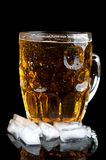 Cold beer with ice Stock Images