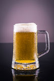 Cold beer. Mug of cold beer, isolated stock images