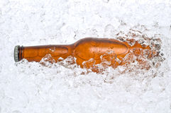 Cold beer nestled in crushed ice. Cold beer resting in a pile of crushed ice Stock Photography