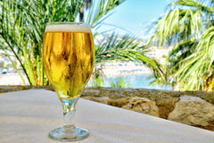 Cold beer on table in the beach garden Royalty Free Stock Photography