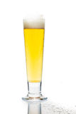 Cold beer in tall glass with reflection and isolated in white Royalty Free Stock Photos