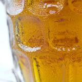 Cold beer Stock Photography