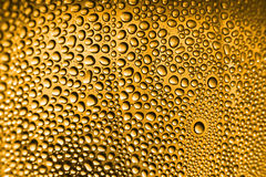 Cold beer texture Stock Image